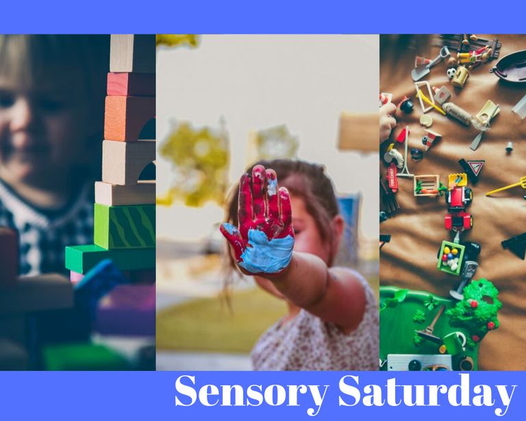 Sensory Saturday Logo.png